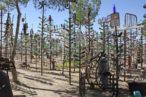 Bottle Tree Ranch 3