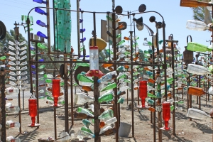 Bottle Tree Ranch 6