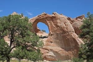 Window Rock Arizona