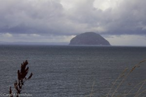 Ailsa Craig 6 October 2014 (1 of 1)