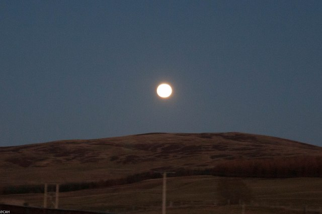 Full moon A702 1 (1 of 1)