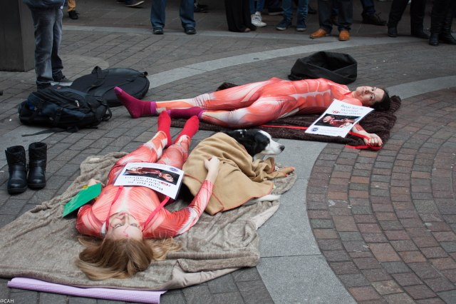 Animal rights activists Knightsbridge 14 Feb 2015 (1 of 1)