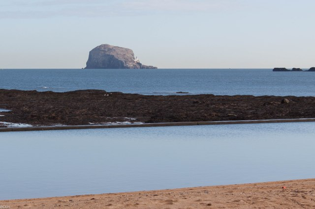 Bass Rock 1 Feb 25 2015 (1 of 1)