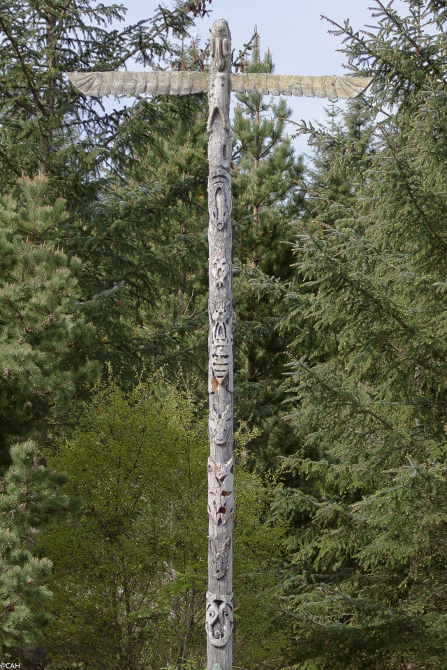 Borgie Forest totem pole 4 June 2015 (1 of 1)