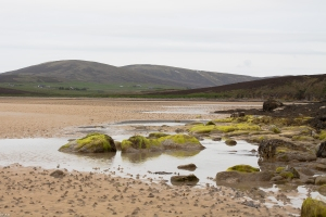 Waulkmill Bay 11 June 2015 (1 of 1)