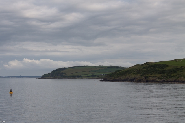 Galloway coast 2 12 July 2015 (1 of 1)