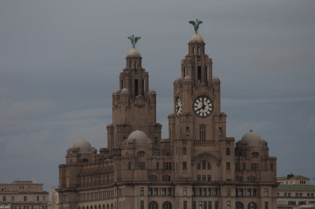 Liver building from Birkenhead dock (1 of 1)