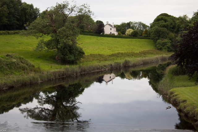 River Bladnoch 1 12 July 2015 (1 of 1)