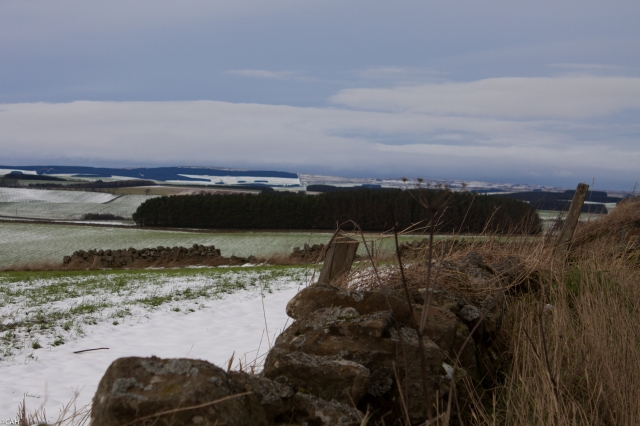 Borders landscape 31 Jan 2016 (1 of 1)