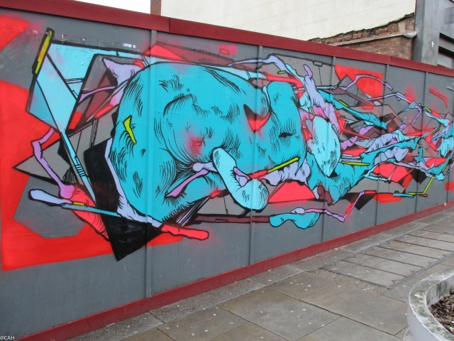 Street Art 1 Liverpool 4 Feb 2016 (1 of 1)