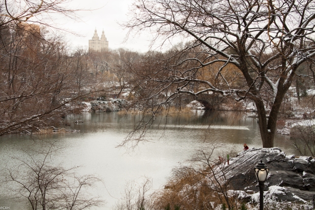 Central Park in snow 5 March 2016 (1 of 1)