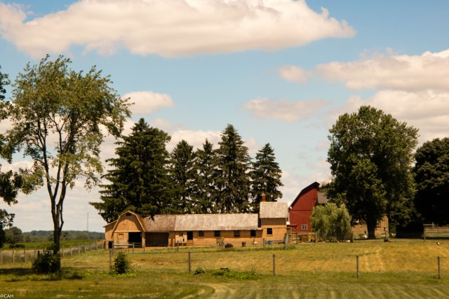 Farmland East OH 29 June 2016-1