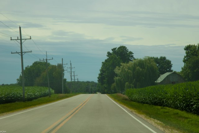 Through the cornfields Iowa 2 July 2016-1