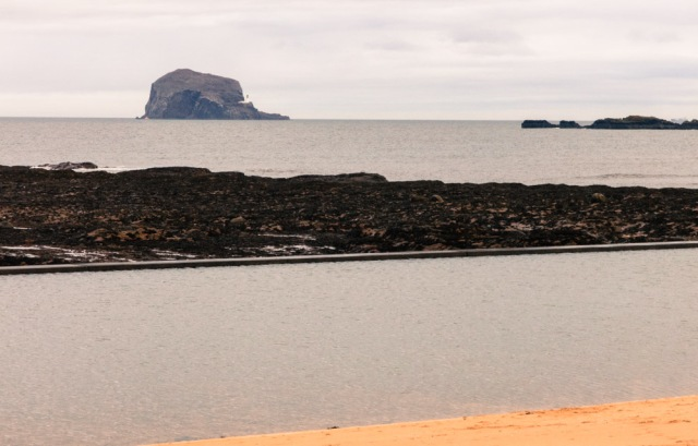 bass-rock-north-berwick-15-jan-2017-1-of-1