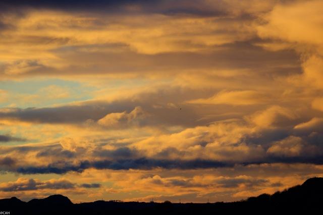 sunset-3-blackford-hill-1-jan-2017-1